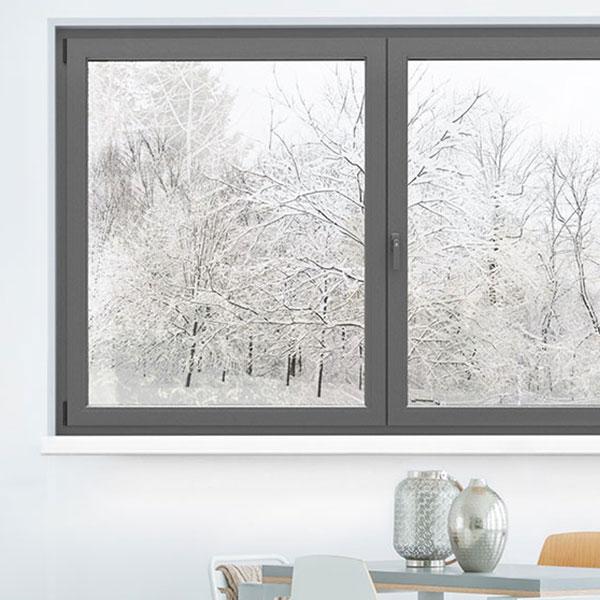 frosty trees outside of a window